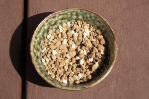 盆栽20130524号 鉢と土