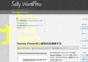 WordPressカスタマイズブログSalty WordPress