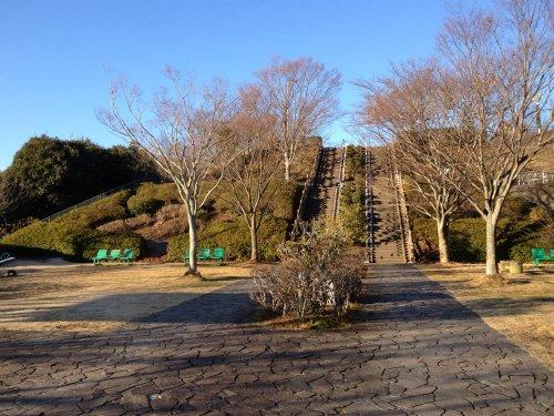 船越堤公園の最初の階段を上ったところの広場